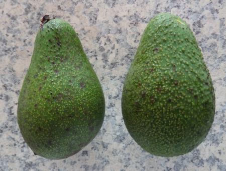 forma de fruta fuerte