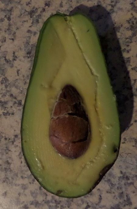 Sharwil Avocado